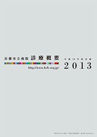 診療概要2013年(平成24年度実績)