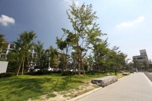 観楓(かんぷう)の庭